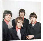 The Troggs by Roper