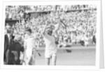 Wimbledon 1977 by Ron Hallett