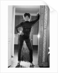 Shirley Bassey by Wilkinson