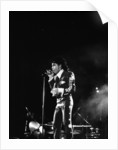 Prince in concert at the NEC 1988 by Anonymous