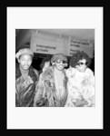 Stevie Wonder, 1974 by Dennis Stone