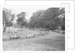Daily Herald race meeting at Oulton Park by Hicklin / Barham