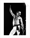 Queen at Wembley Arena by Anonymous