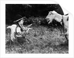"""Gerald Portlock's grand daughter """"holds up"""" the Nanny goat by Staff"""