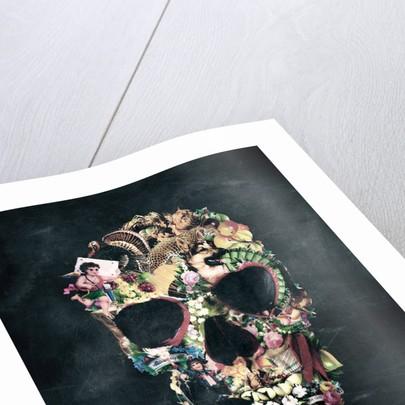 Vintage Skull Art Print by Ali Gulec