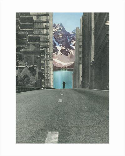 Into the Wild by Sammy Slabbinck
