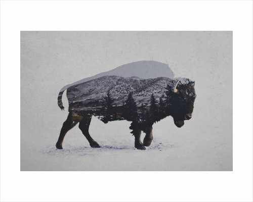 American Bison by Davies Babies