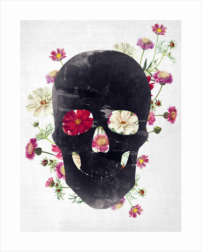 Skull Grunge Flower by Francisco Valle
