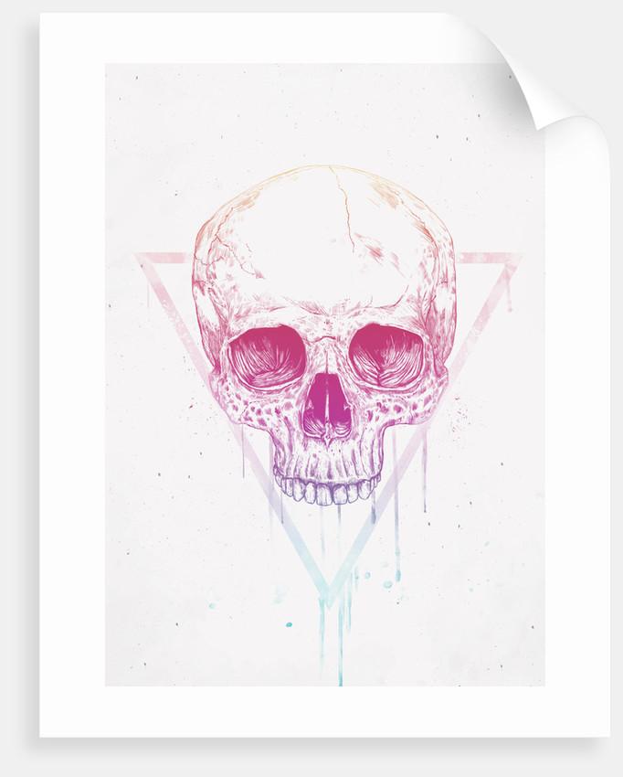 Skull in Triangles by Balazs Solti