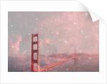 Stardust San Francisco by Bianca Green