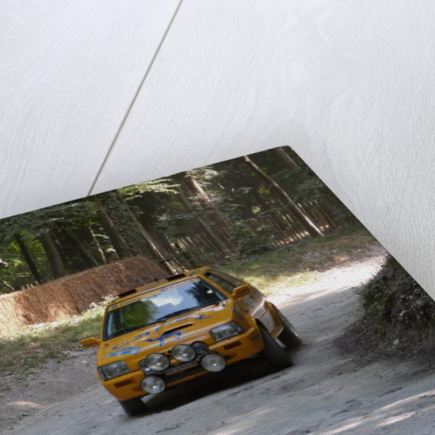 Nissan Micra Camel Rally Car Goodwood Festival of Speed 2013 by Unknown