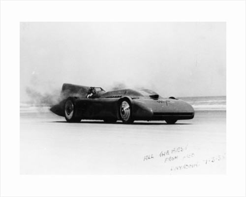 Bluebird at Daytona by Anonymous
