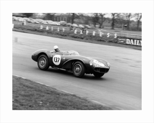 M Ward racing a 1955 Aston Martin DB3S by Anonymous