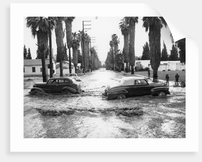 Cars on a flooded road in California by Anonymous