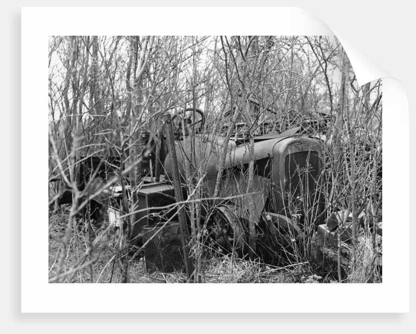 Remains of a 1920s Austin 20hp vehicle by Unknown