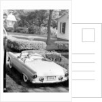 Ford Thunderbird by Anonymous