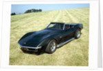 A 1969 Chevrolet Corvette Stingray in a field by Unknown