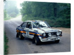 1981 Ford Escort RS1800 by Unknown