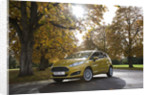 2013 Ford Fiesta Econetic by Unknown