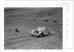 Frazer-Nash BMW 319/55 at the London Motor Club Coventry Cup Trial, Knatts Hill, Kent, 1938 by Bill Brunell