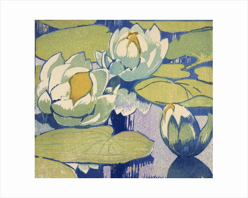 Water Lilies by Mabel Royds