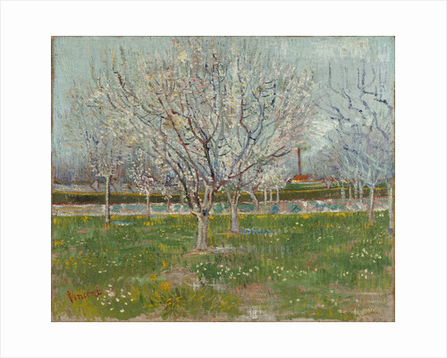 Orchard in Blossom (Plum Trees) by Vincent Van Gogh