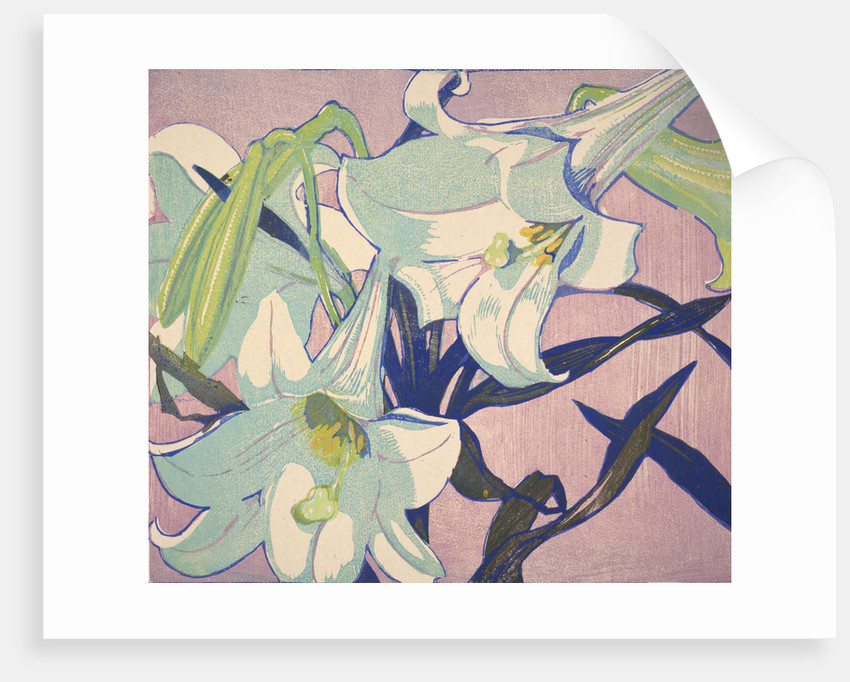 White Lilies by Mabel Royds