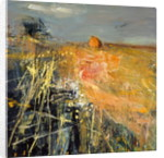 Summer Fields by Joan Eardley