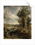 The Vale of Dedham by John Constable