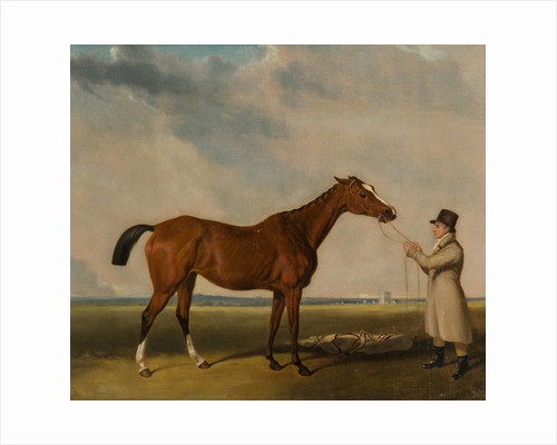Rhoda', A Bay Racehorse by William Tasker