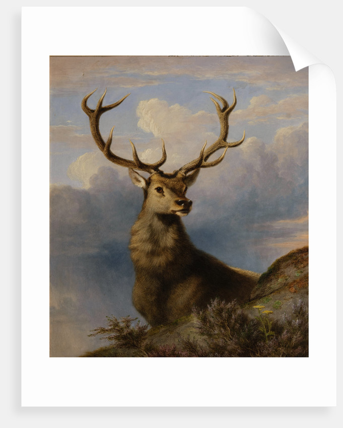 The Monarch of the Glen 1861 by James William Giles