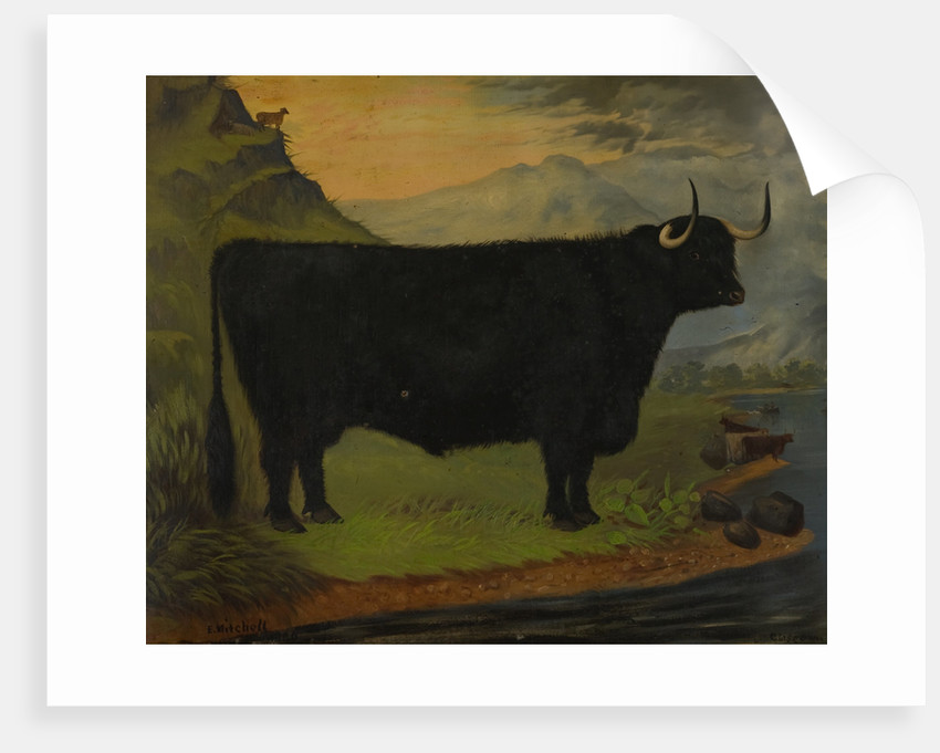 A Black Highland Bull in a Highland Landscape 1880 by E. Mitchell