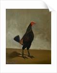 Fighting Cock. by Hilton Pratt