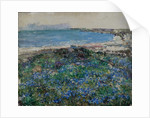 Blue Flax, Brighouse Bay by Edward Atkinson Hornel