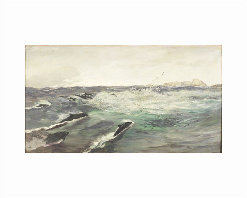 Porpoises Chasing Mackerel by Charles Napier Hemy