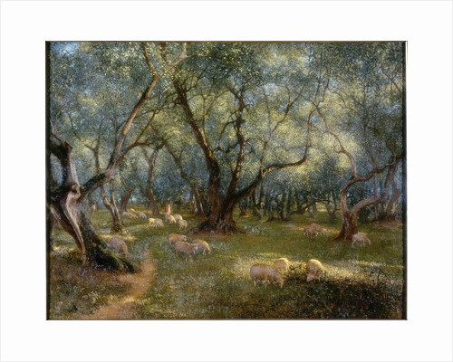 Olives of St Rocco by Thomas Bowman Garvie