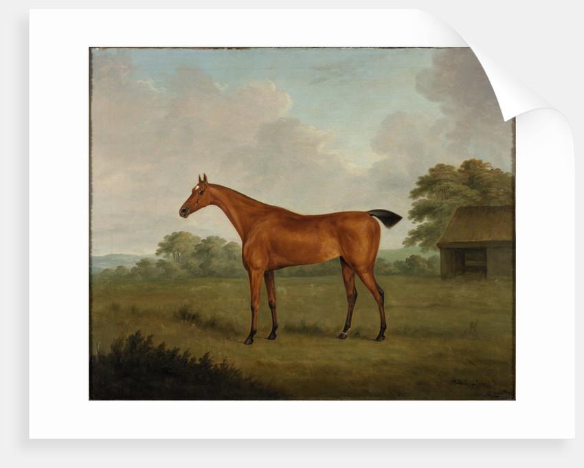 Chestnut Horse in a Landscape by John Nost Sartorius