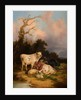Cattle and Sheep by Thomas Sidney Cooper