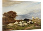 In the Marshes near Ramsgate, Isle of Thanet by Thomas George Cooper