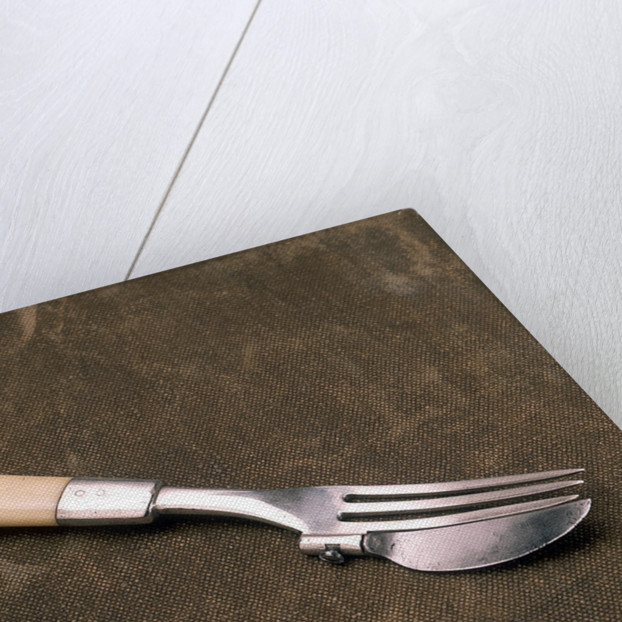 Combined knife and fork by unknown