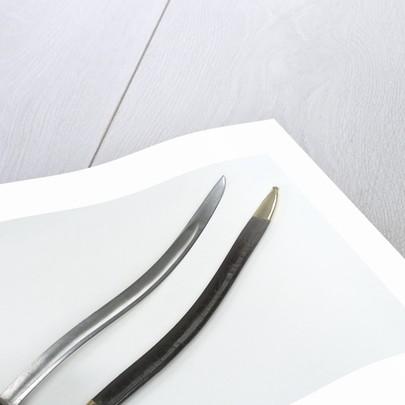 French cutlass by Impale de Chatellerault