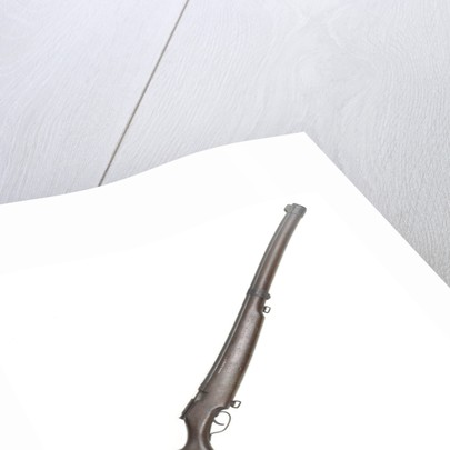 Model 82 rifle by Cooey