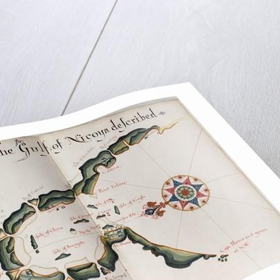 The Gulf of Nicoya by William Hack