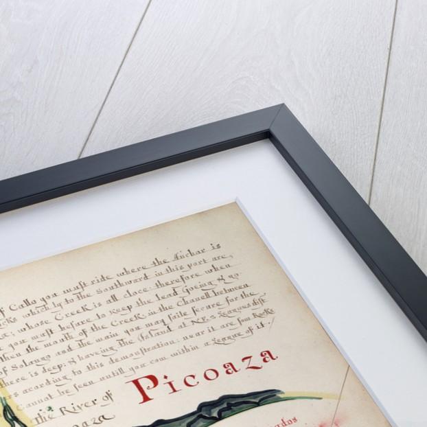 Picoaza by William Hack