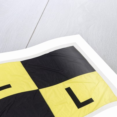 House flag, Link Line Ltd by unknown