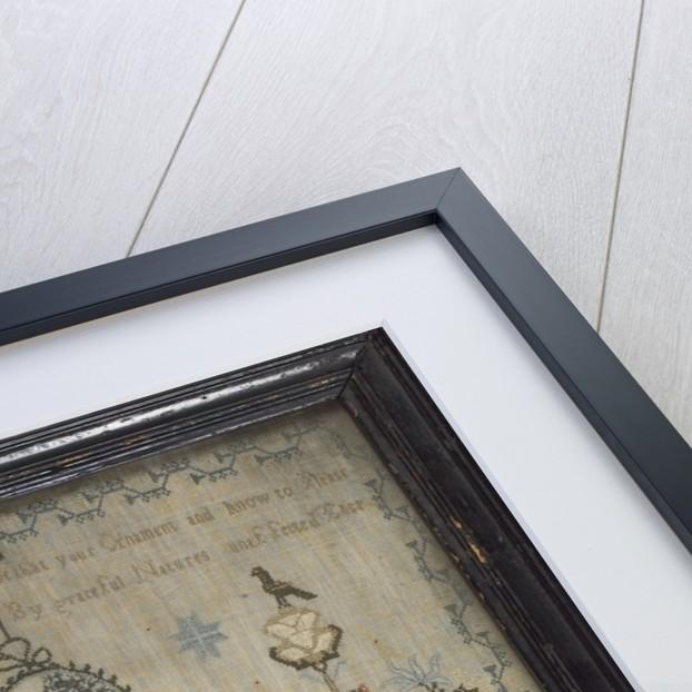 Framed and glazed linen sampler by Mary Lupson