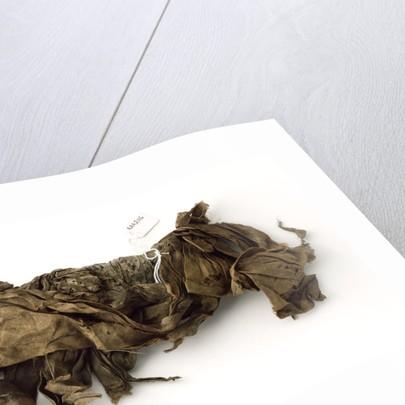Neckerchief by unknown