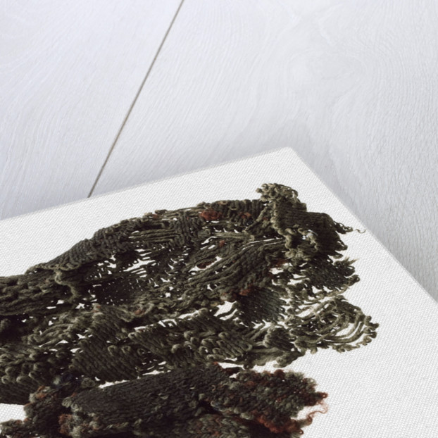 Glove fragment by unknown