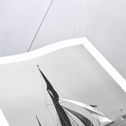 'Satanita' (Br, 1897) under sail by unknown