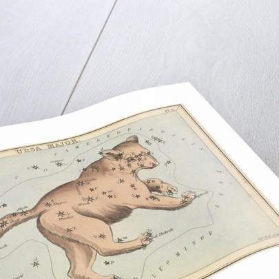 Ursa Major by Sidney Hall
